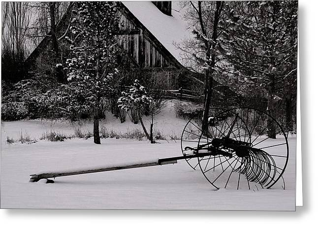 Idle Time - Waiting For Spring Greeting Card by Steven Milner