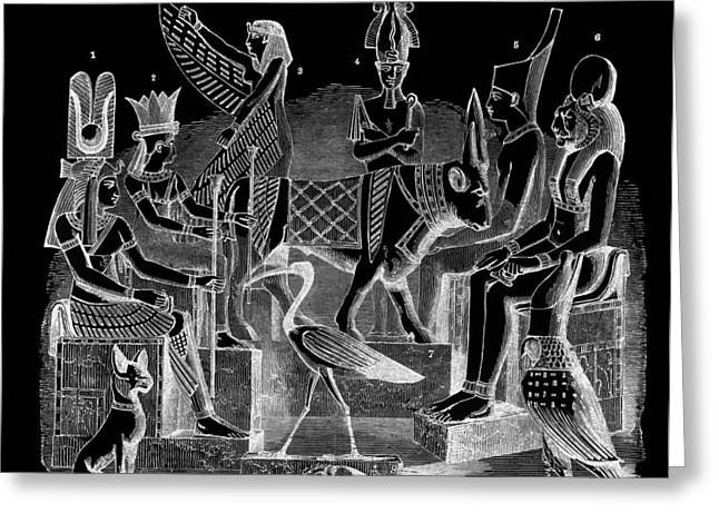 Beetle Cat Greeting Cards - IDOLS  of EGYPT Greeting Card by Daniel Hagerman