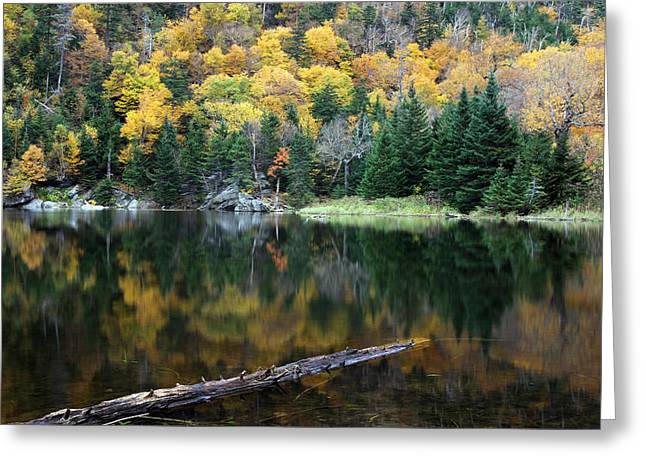 Lovely Pond Greeting Cards - Idyllic Vermont Autumn Glory Greeting Card by Juergen Roth