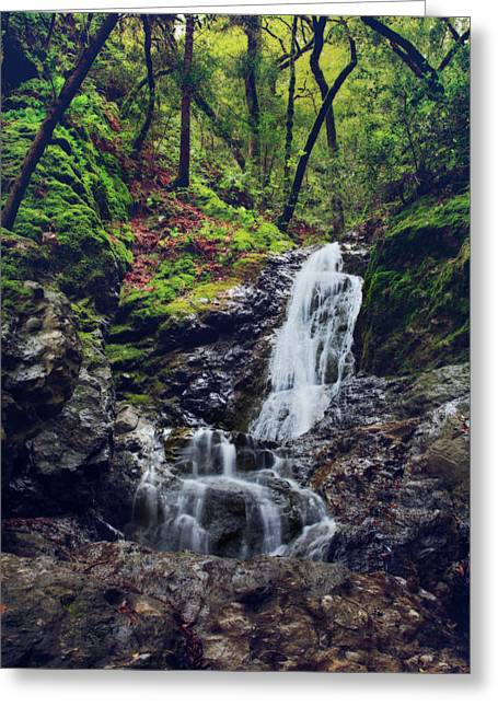 Falling Water Greeting Cards - If I Keep Falling Greeting Card by Laurie Search