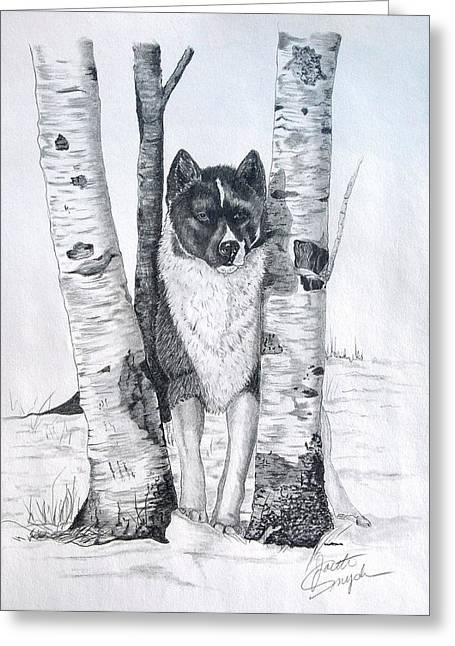 Winter Prints Drawings Greeting Cards - Ihasa in the Woods Greeting Card by Joette Snyder
