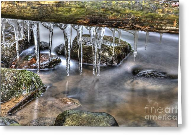 Artist Photographs Greeting Cards - Iicicles time Greeting Card by Veikko Suikkanen