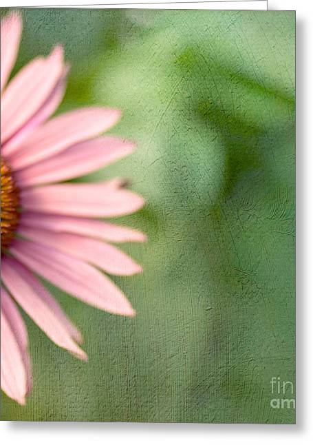 Coneflowers Greeting Cards - Ill Take Half Greeting Card by Rebecca Cozart
