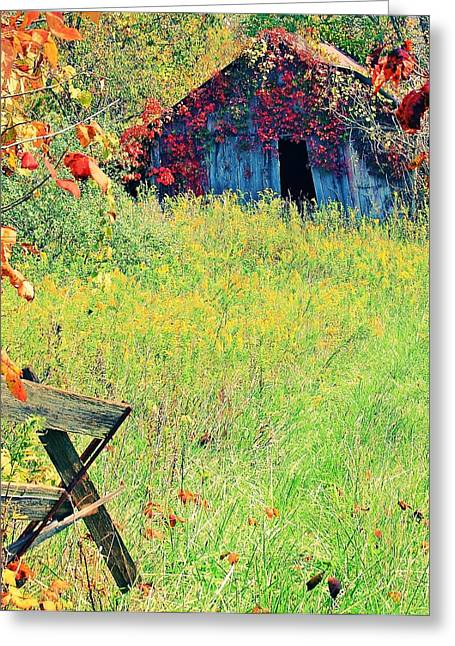 Pasture Scenes Mixed Media Greeting Cards - Illinois Backroads Greeting Card by Virginia Folkman