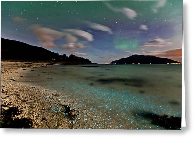 Sortland Greeting Cards - Illuminated beach Greeting Card by Frank Olsen