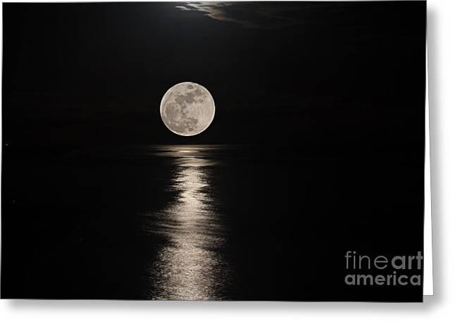Sea Moon Full Moon Greeting Cards - Illuminating  Greeting Card by Bob Hislop