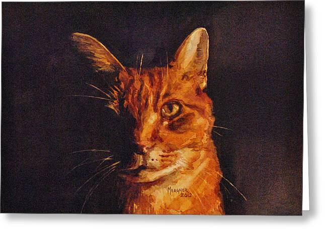 Orange Tabby Paintings Greeting Cards - Illumination Greeting Card by Spencer Meagher
