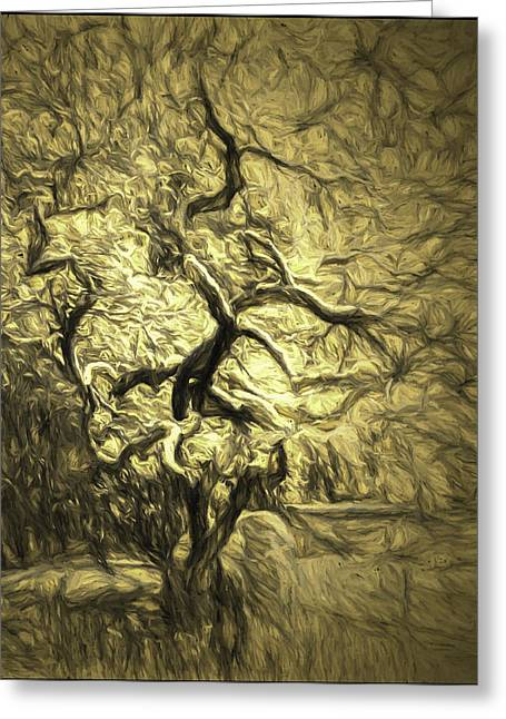 Color_image Greeting Cards - Illusion Tree Greeting Card by Jean OKeeffe Macro Abundance Art
