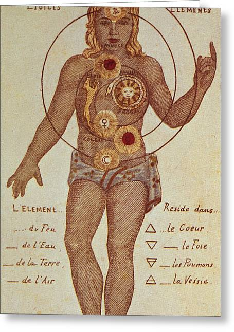 Energy Photographs Greeting Cards - Illustration From Theosophica Practica, Showing The Seven Chakras, 19th Century Greeting Card by Bridgeman Images
