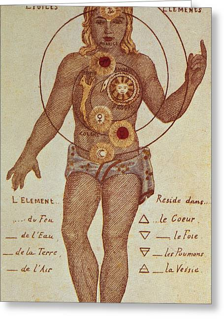 Illustration From Theosophica Practica, Showing The Seven Chakras, 19th Century Greeting Card by Indian School