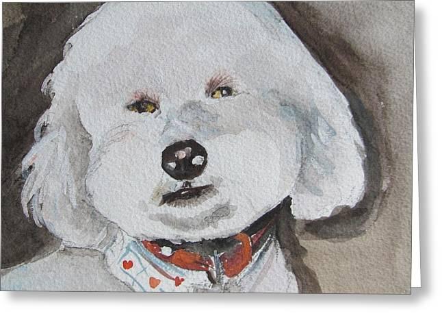 Melinda Saminski Greeting Cards - Im a Good Boy Greeting Card by Melinda Saminski