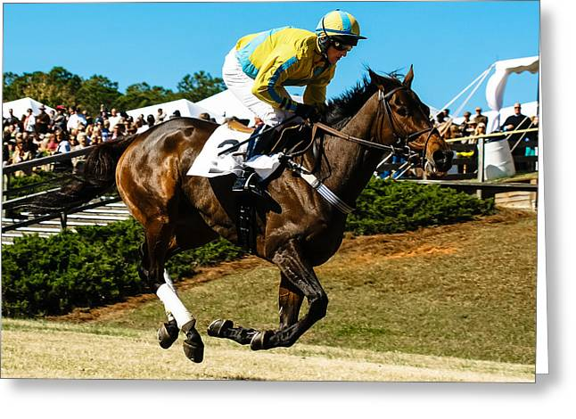 Steeplechase Race Greeting Cards - Im In Front Greeting Card by Robert L Jackson