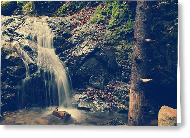 Falling Water Creek Greeting Cards - Im Not Giving Up On You Greeting Card by Laurie Search
