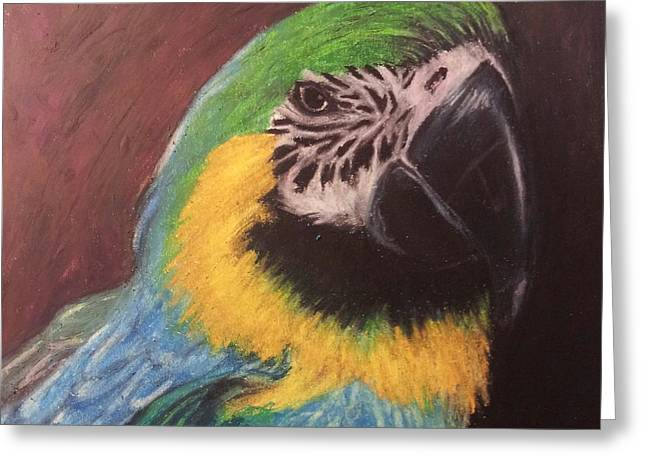 Flying Bird Pastels Greeting Cards - Im Ready Greeting Card by Richard James