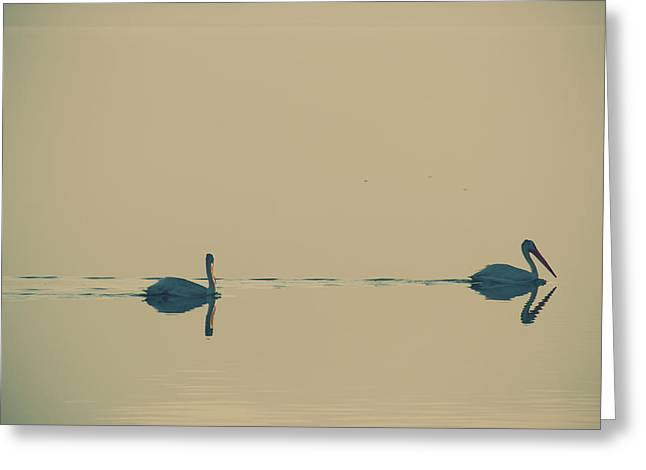 I'm Sailing Right Behind Greeting Card by Laurie Search