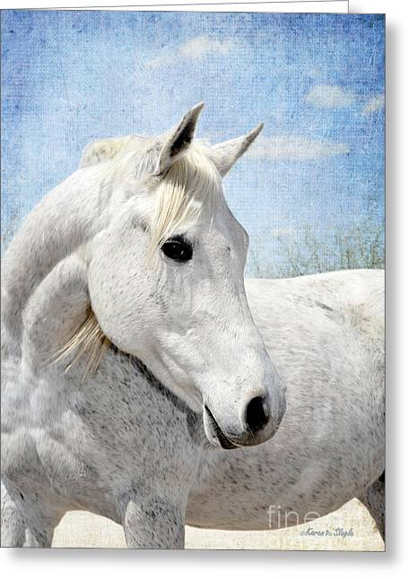 Gray Muzzle Greeting Cards - Im so Pretty Greeting Card by Karen Slagle
