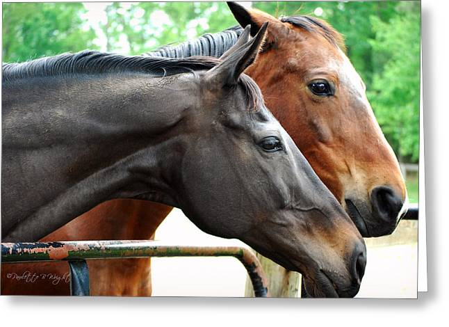 Top Seller Greeting Cards - Im With Him and Hes With Me Greeting Card by Paulette B Wright