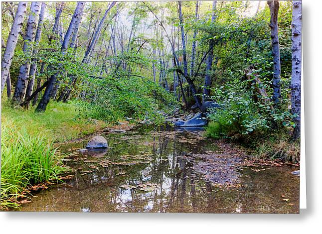 Recently Sold -  - Beautiful Creek Greeting Cards - Imagine Us Together Here Greeting Card by Heidi Smith
