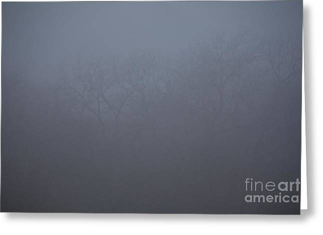 Grey Clouds Greeting Cards - Imagining Life Greeting Card by Lisa Holmgreen