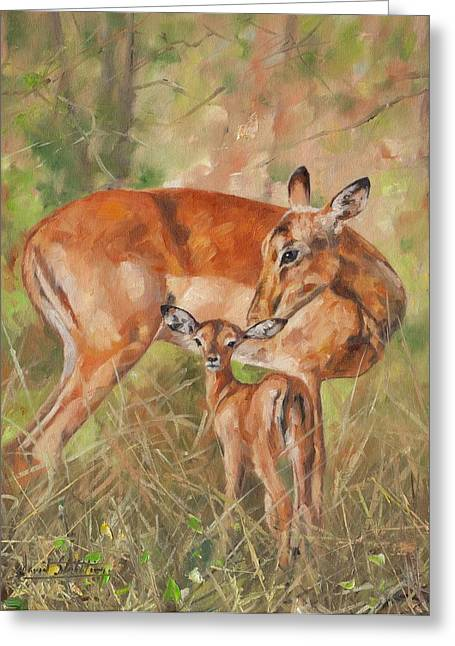 Caring Mother Paintings Greeting Cards - Impala Antelop Greeting Card by David Stribbling