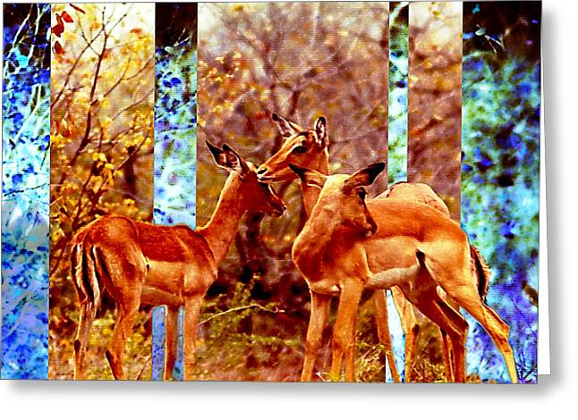 Wilderness Pyrography Greeting Cards - Impalas Dreaming Greeting Card by Hartmut Jager