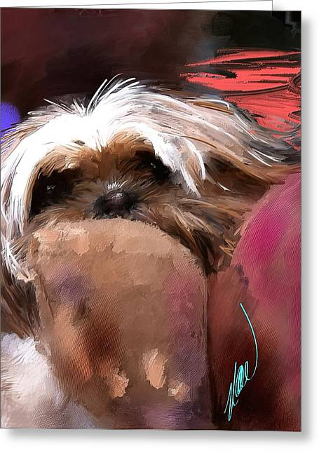 Toy Dog Greeting Cards - Impatience Greeting Card by Richard Okun