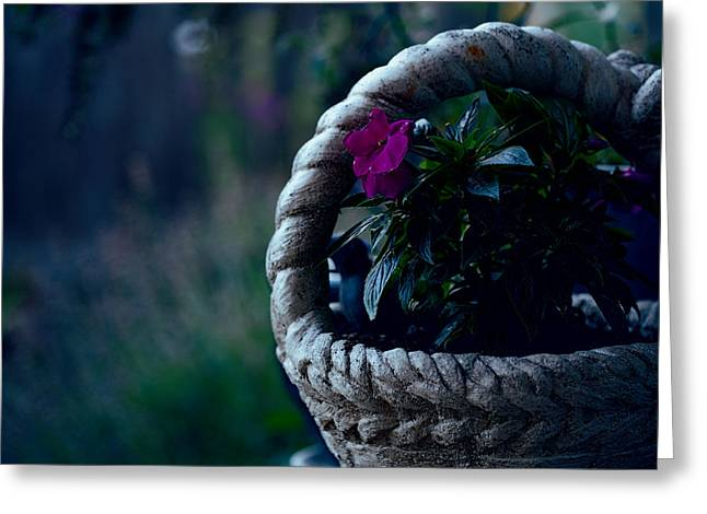 Stone Planter Greeting Cards - Impatiens Greeting Card by Bonnie Bruno