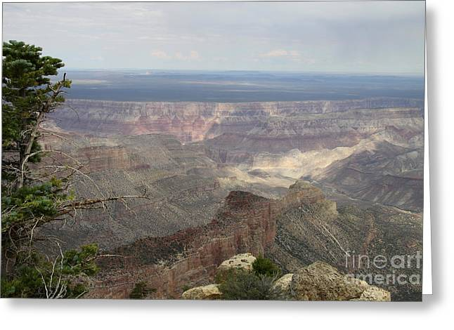 Walhalla Greeting Cards - Imperial Point Vista View - Grand Canyon Greeting Card by Christiane Schulze Art And Photography