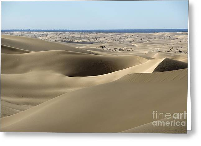 Desertification Greeting Cards - Imperial Sand Dunes Greeting Card by Mark Newman