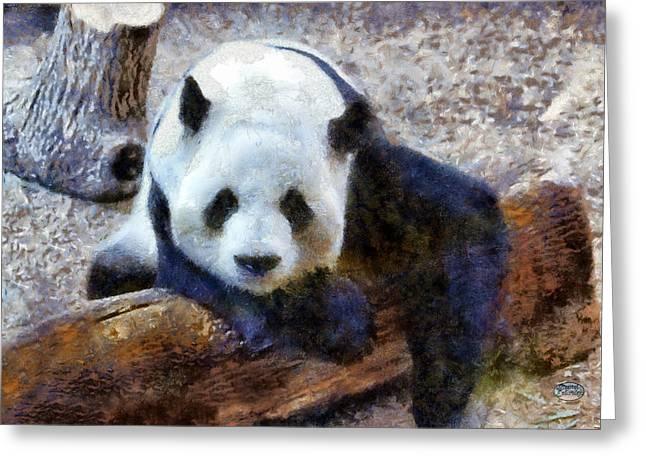 Yang Greeting Cards - Impressionist Panda Greeting Card by Daniel Eskridge