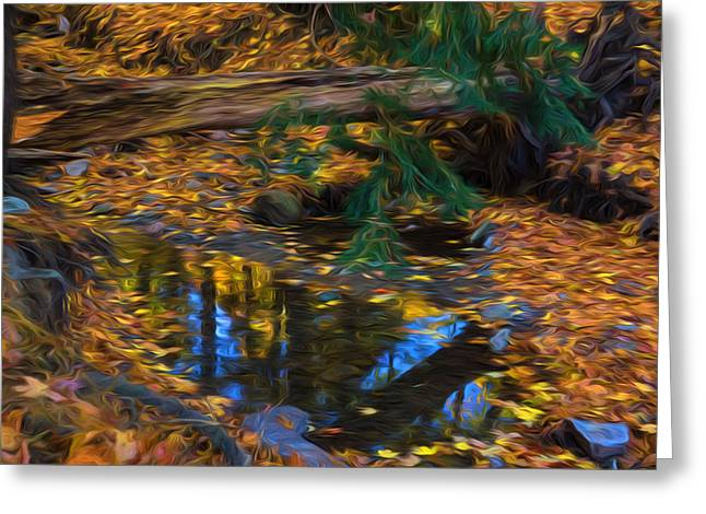 Babbling Greeting Cards - Impressions of a Little Forest Creek in the Fall Greeting Card by Georgia Mizuleva