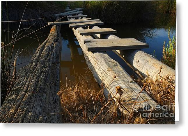 Ludo Greeting Cards - Improvised Wooden Bridge Greeting Card by Angelo DeVal
