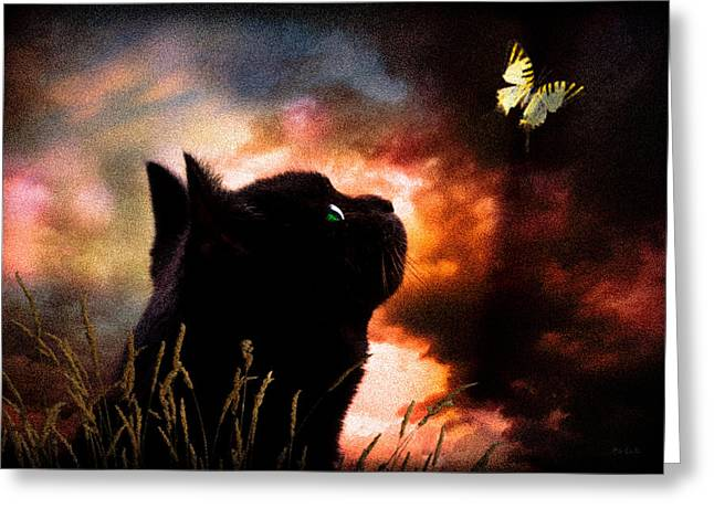Dark Skies Greeting Cards - In a cats eye all things belong to cats.  Greeting Card by Bob Orsillo