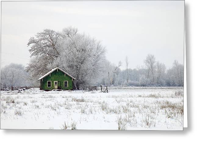 Shack Photographs Greeting Cards - In a Sea of White Greeting Card by Mike  Dawson