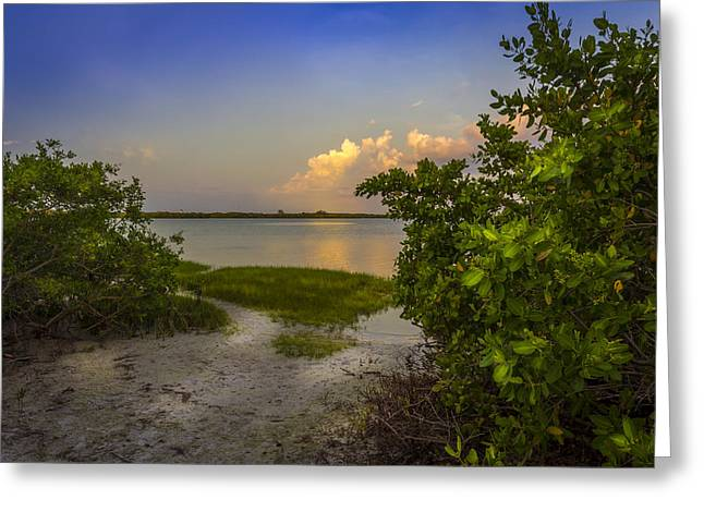 Gulf Of Mexico Scenes Greeting Cards - In Coming Tide Greeting Card by Marvin Spates