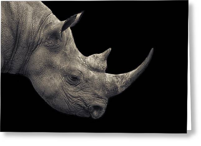 Recently Sold -  - Rhinoceros Greeting Cards - In Critical Danger Greeting Card by Mario Moreno