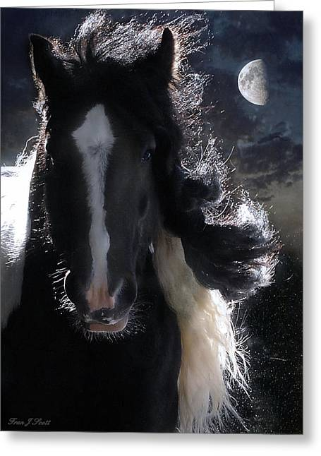 Horse Prints Greeting Cards - In Dreams... Greeting Card by Fran J Scott