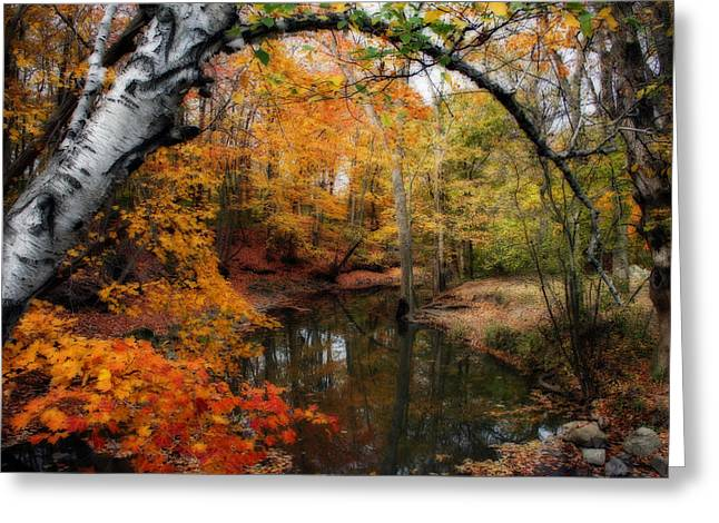 Beautiful Creek Greeting Cards - In Dreams Of Autumn Greeting Card by Kay Novy