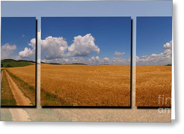 Cereal Digital Greeting Cards - In field Greeting Card by Ludek Sagi Lukac