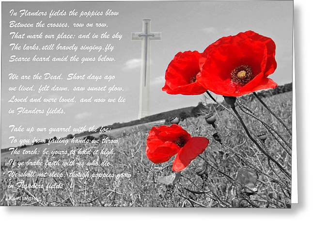 Ww1 Greeting Cards - In Flanders Fields Greeting Card by Gill Billington