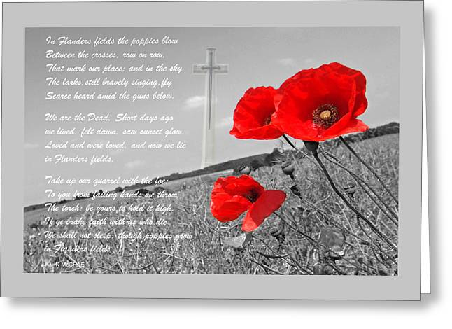 Recently Sold -  - Flower Design Greeting Cards - In Flanders Fields Greeting Card by Gill Billington