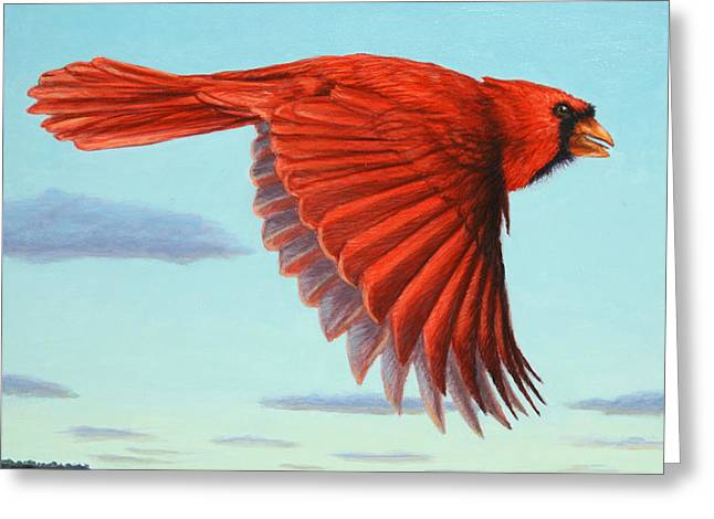 In Flight Greeting Card by James W Johnson