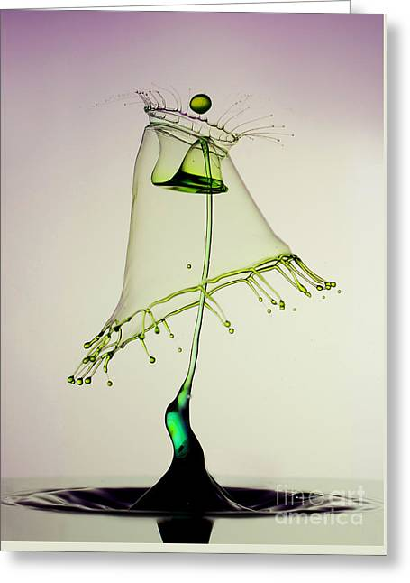 In Green Greeting Card by Jaroslaw Blaminsky