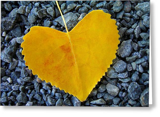 Yellow Greeting Cards - In Love ... Greeting Card by Juergen Weiss