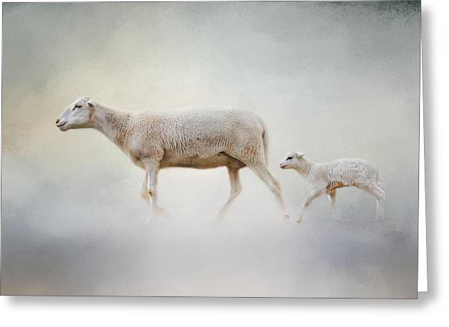 Farm Hand Greeting Cards - In My Mothers Footsteps - Sheep and Lamb Greeting Card by Jai Johnson