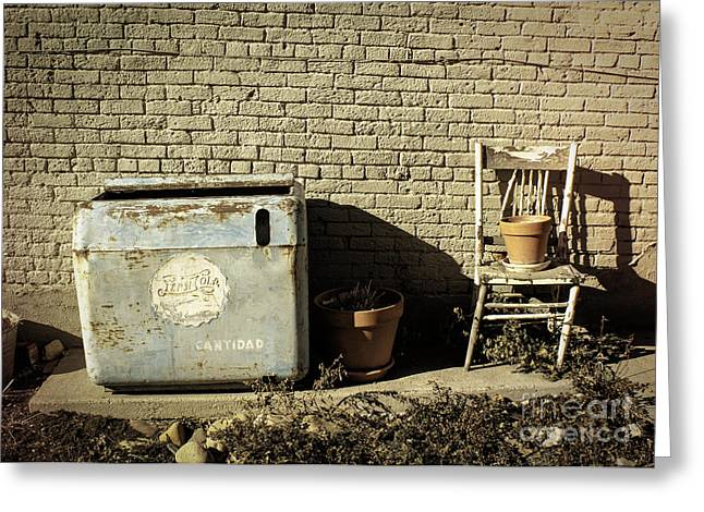 Old And In The Way Greeting Cards - In The Alley Greeting Card by Janice Rae Pariza