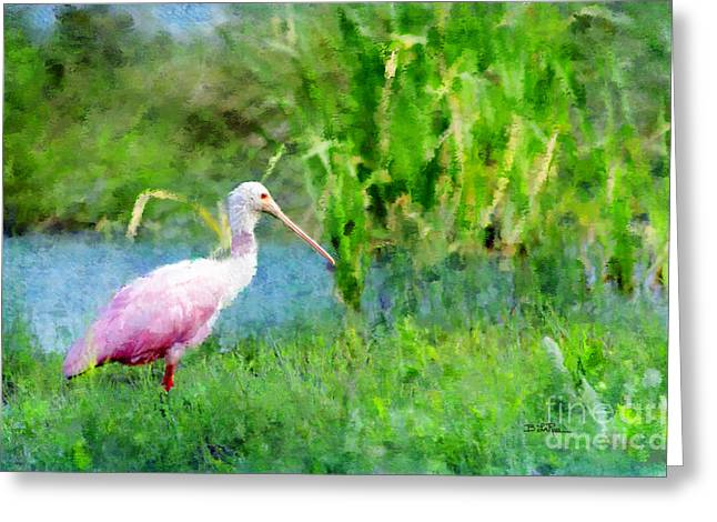 Spoonbill Greeting Cards - In The Bayou #1 Greeting Card by Betty LaRue