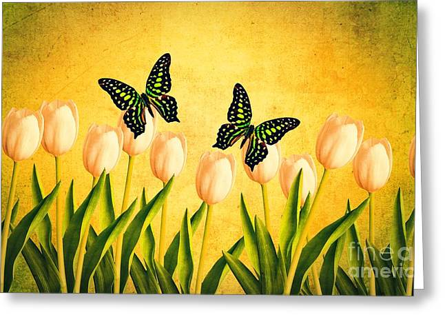 New Hampshire Leaves Greeting Cards - In the Butterfly Garden Greeting Card by Edward Fielding