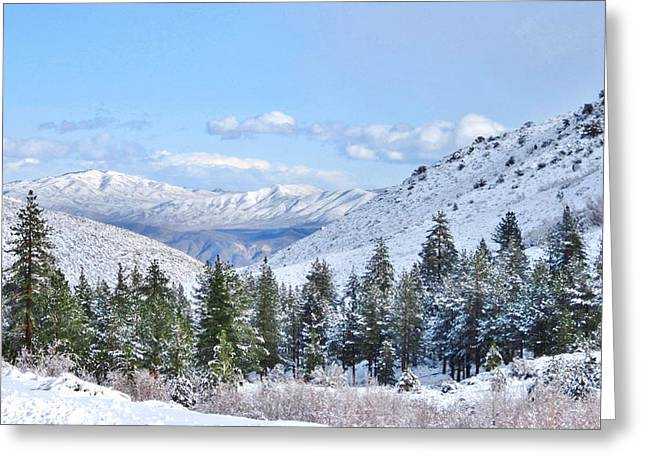 Bishop Hill Greeting Cards - In The Canyon Greeting Card by Marilyn Diaz