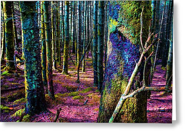 Beautiful Scenery Greeting Cards - In the Colorful Wood. Rest and Be Thankful. Scotland Greeting Card by Jenny Rainbow
